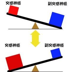 自律神経 バランス.jpg