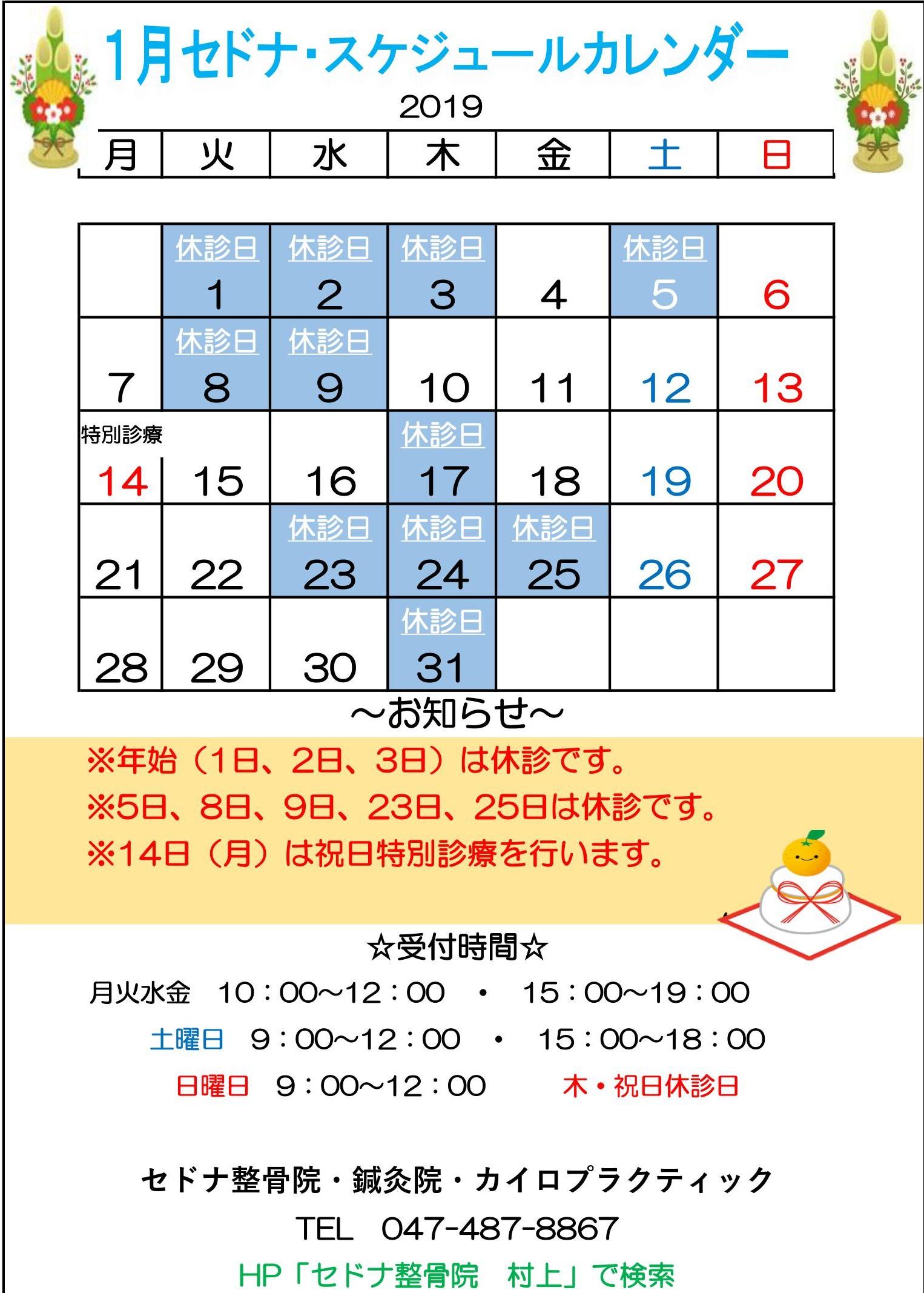 2019.1 スケカレ ブログ.jpg